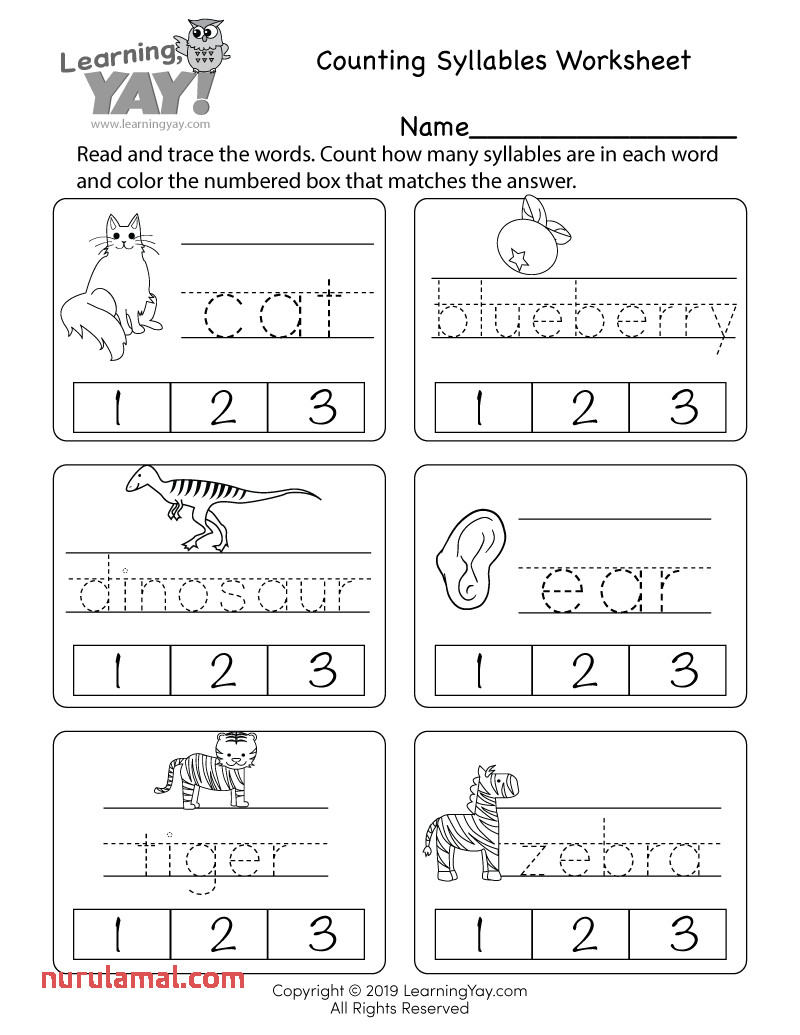 free first grade printable worksheets reading and writing math 3rd fractions for