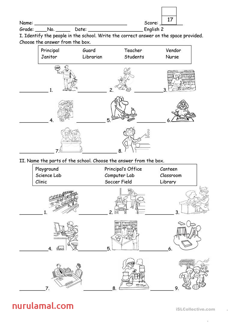 Worksheet Ideas Worksheet Ideas People and Part the